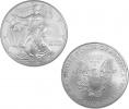 2008 1 oz Silver American Eagle Coin in Capsule