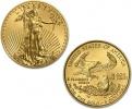 2010 1/10 oz Gold American Eagle Coin