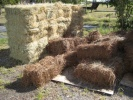 Pine Straw from Louisiana Long Leaf Pines - 15 lbs