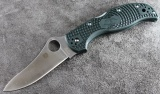 Spyderco Stretch 2 Green C90PGRE2