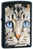 The Zippo Cats Face lighter 280409