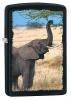 Zippo ELEPHANT BLACK MATTE - 28666