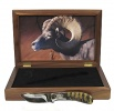 Browning Desert Bighorn Sheep Knife - 322-407