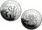 2015 Silver Somalian African Elephant 1 oz Coin
