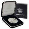 2013 1 oz Silver American Eagle Coin in US Mint Box