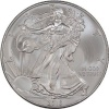 2013 1 oz Silver American Eagle Coin in Air-Tite Capsule