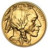 2013 1 oz Gold American Buffalo Coin