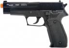 Firepower Sig Sauer Model P226 - FPR28114