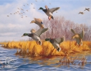 Ducks Unlimited Embossed Tin Sign 16 x 12 1/2 Inch